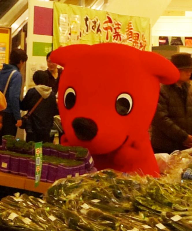 千葉県産農産物PRキャンペーン
